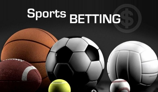 Photo of Sports Betting Forums – More Discomfort Than Profit